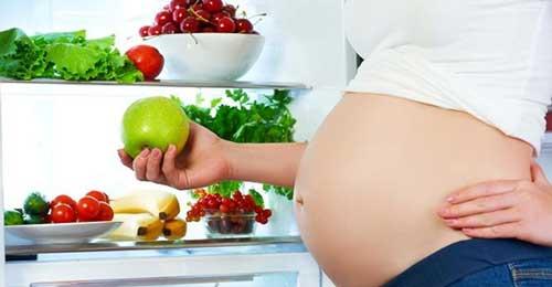 Etapas del Embarazo de una Mujer