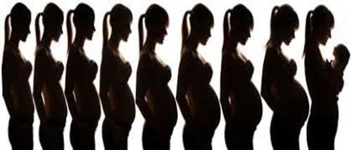 Síntomas Comunes en las Etapas del Embarazo